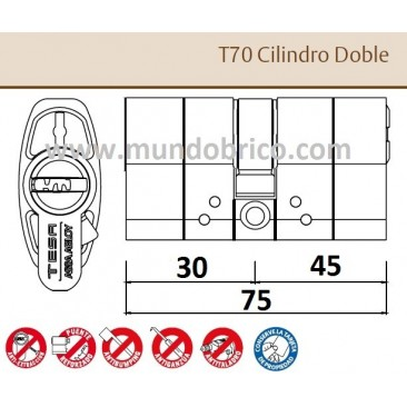 Bombillo TESA T-70 30x45 Niquelado Leva alta doble embrague